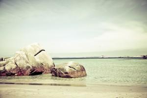 Beach Paradise Travel