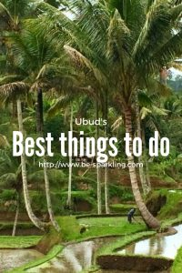 Ubud, Bali, Indonesia, travel blog, travel blogger