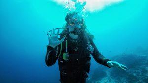 Sharm el Sheikh, Egypt, Royal Savoy, Savoy Group, underwater, corals, colourful, korallen, unterwasser