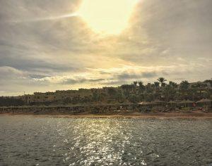 sharm-el-sheikh-beach-sunset-palms