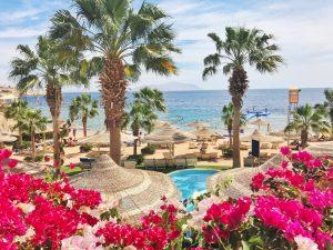 Sharm el Sheikh, Egypt, Royal Savoy, Savoy Group, beach, palms, flowers