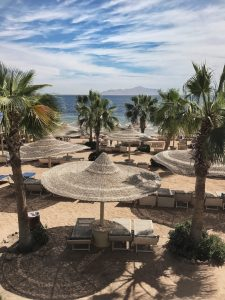 Sharm el Sheikh, Egypt, Royal Savoy, Savoy Group, beach, palms