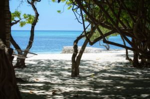 Maldives, Island, Paradise, white beach, white sand, blue water, blue sky