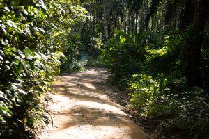 Thailand, Koh Yao Noi, Island