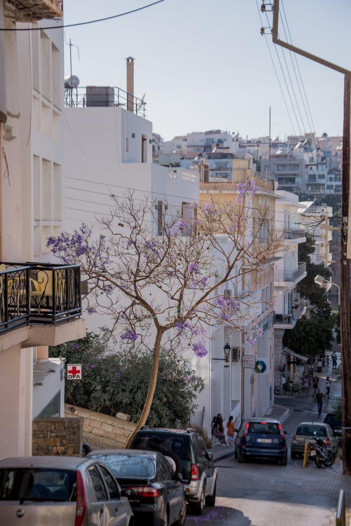 Agios Nikolaos, einkaufen, shoppen
