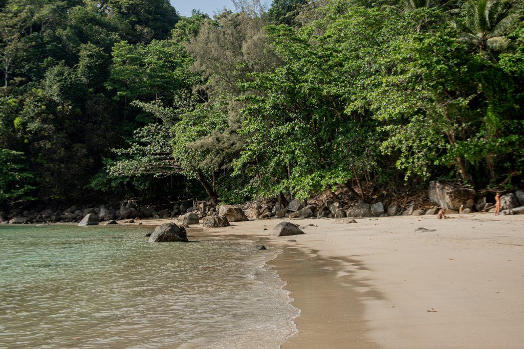 Phuket, Thailand, Strand, Meer, Sand, Natur, grün, Bäume