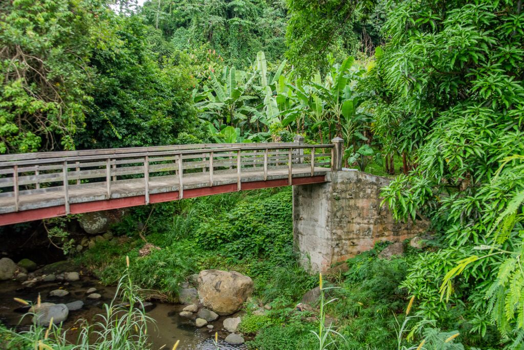 Caribbean, Grenada, Nutmeg Farm, Bridge
